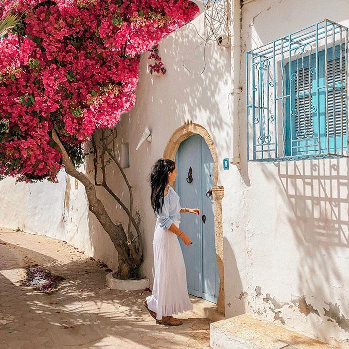 Вся информация о турах и отелях в Тунисе