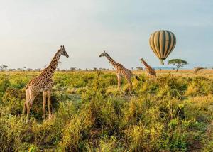 парки танзании