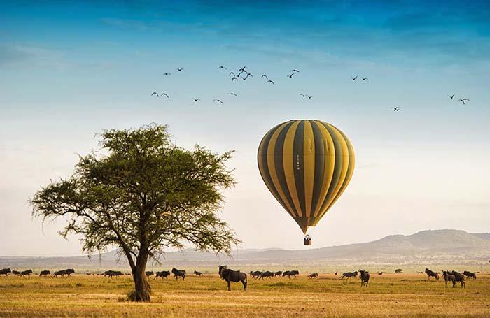 Сафари в национальном парке в Танзании