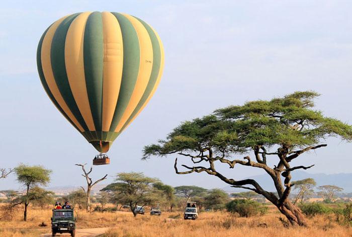 Сафари, полет на воздушных шарах в Танзании