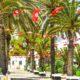 Тунис | Когда откроют Тунис 2021 для россиян