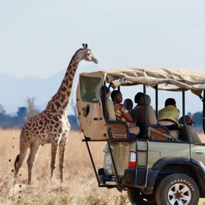 экскурсии в танзании занзибар