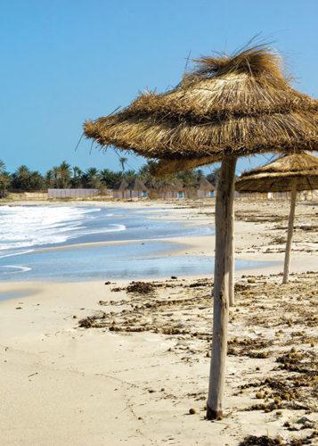 Водоросли на пляже в Тунисе